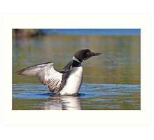 Common loon spray Art Print