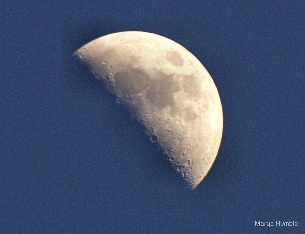 Half Moon by Marya Humble