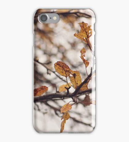 Golden Remnant iPhone Case/Skin