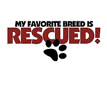 Rescued Dogs ONLY Photographic Print