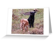 LADY AND THE TRAMP :) Greeting Card