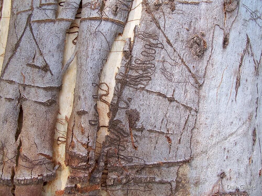 Bark by Dale Gillard