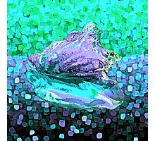 Lavender Seashells Abstract Photographic Print