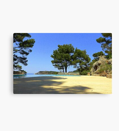 Can You Feel The Heat?? Canvas Print