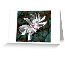 Majestic Magnolia Greeting Card