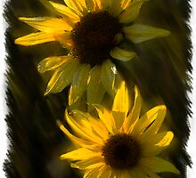 SUNFLOWERS TOGETHER by Katseyes