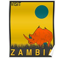 Visit ZAMBIA Travel Poster Poster