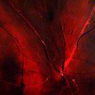 Darkened Inferno by mare