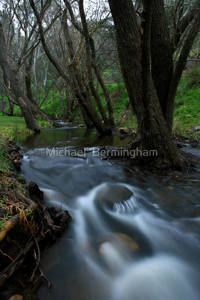 Brown Hill Creek - Adelaide by Michael  Bermingham