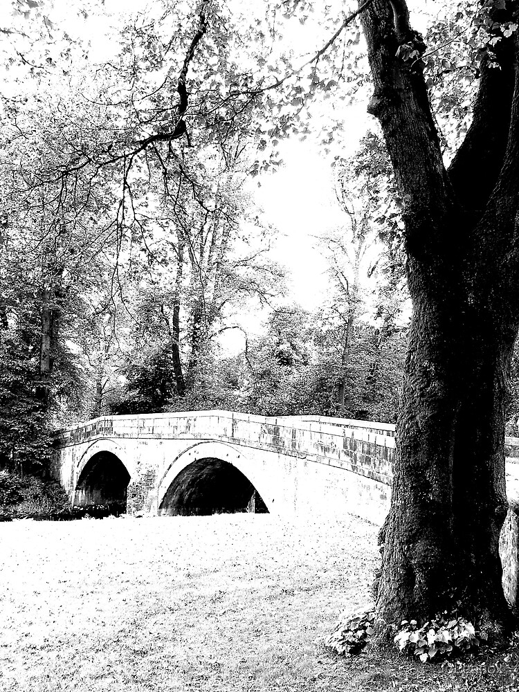 Stone Bridge by JoLennox