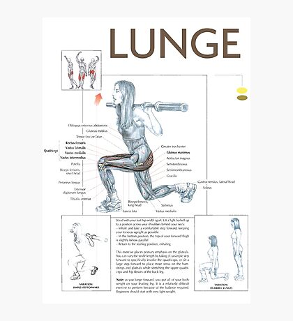 Lunge - Exercise Muscle Diagram Photographic Print
