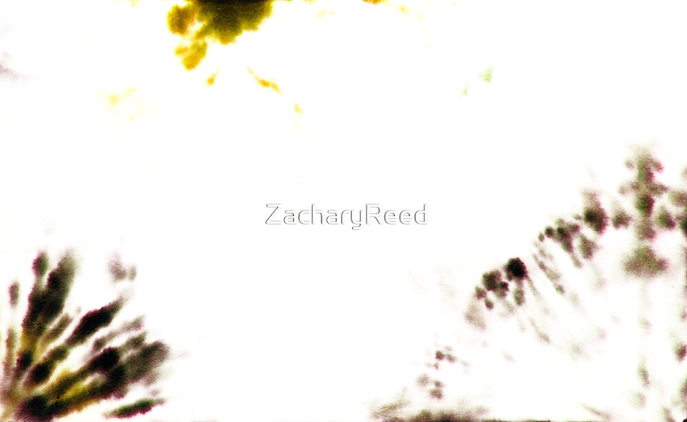 00033 by ZacharyReed