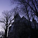 The Bran Castle...Transilvania by Catalin Soare