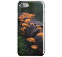 Rainforest Treats iPhone Case/Skin