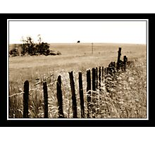 The house on the hill Photographic Print