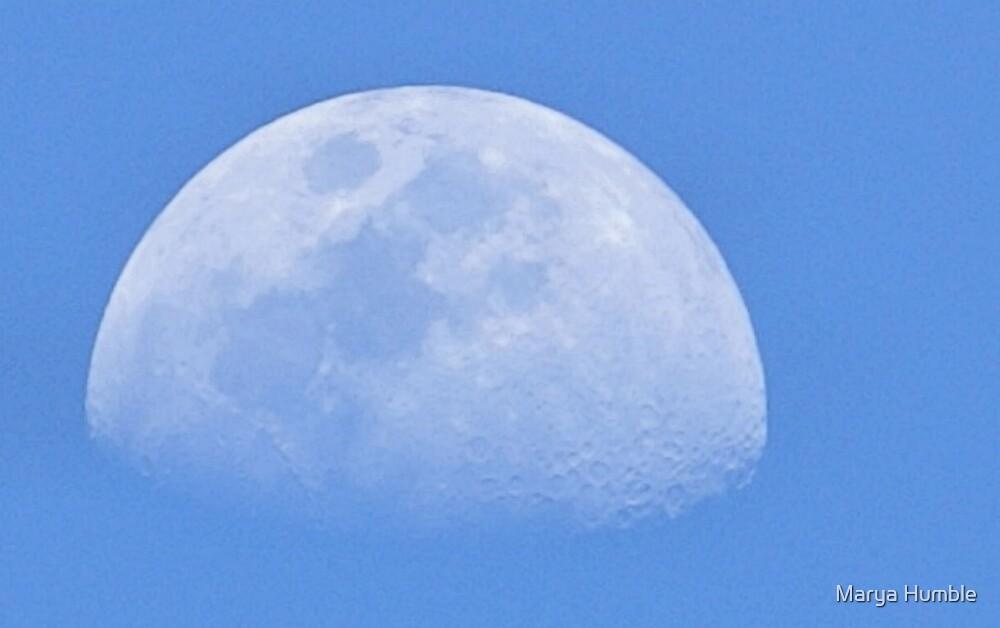 Blue Moon by Marya Humble