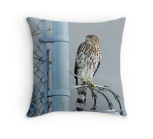 In Unusual Places Throw Pillow