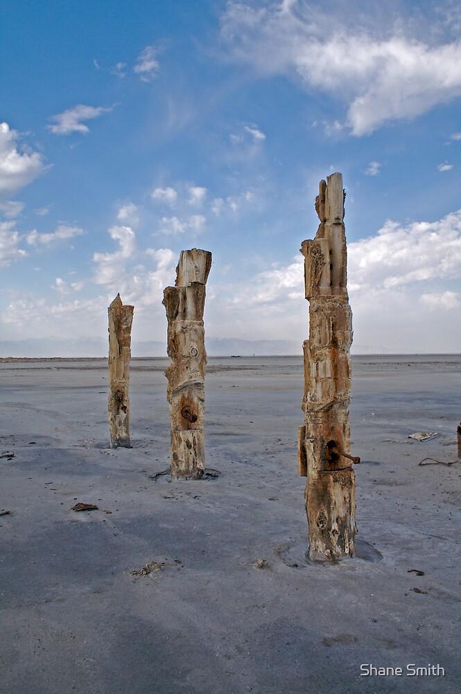 3 Sentinels by Shane Smith