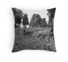 Fossils in the Field (B&W) Throw Pillow
