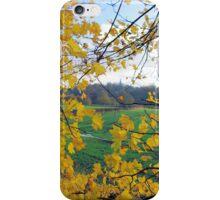 Golden Window On The World iPhone Case/Skin