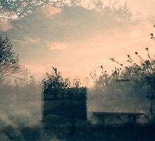 dreaming house by ptica