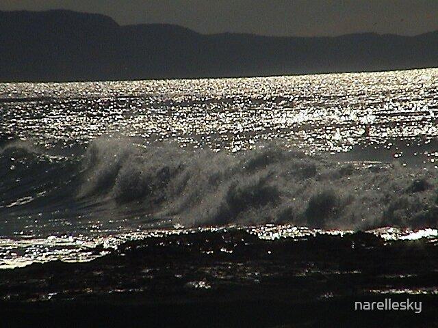 surf by narellesky