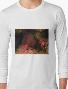 Eel in a Reef Long Sleeve T-Shirt
