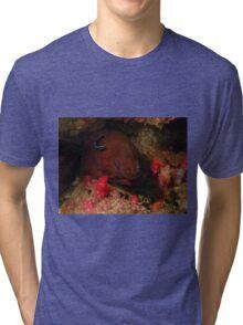 Eel in a Reef Tri-blend T-Shirt