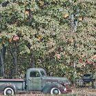 Old Glory Autumn by Richard Bean
