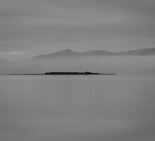 Nature's Fifty Shades of Gray by brotbackgeraet
