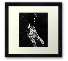 Bronwyn Framed Print