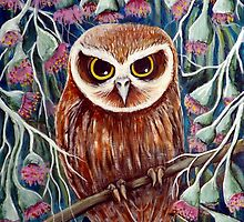 Boobook Owl by Sheridon Rayment by BlueMoonOwl