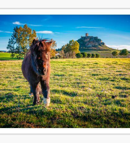 Shetland Pony and Castle - Belmez  Sticker