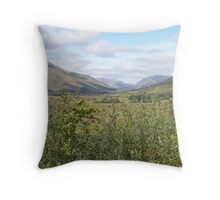over the hedge Throw Pillow