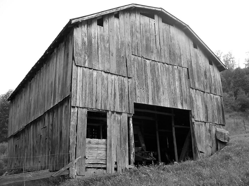 Barn in B&W by Jason Helton