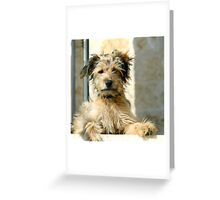 Have to say Greeting Card