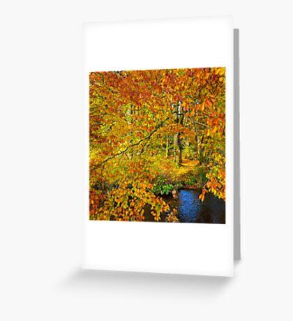 Autumn explodes Greeting Card