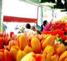 Sunday Morning Tulips Sticker