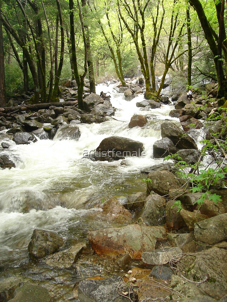 Yosemite Stream by artistfemale