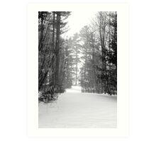 snow scene a Art Print