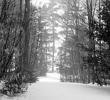 snow scene a by etccdb