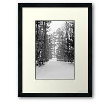 snow scene a Framed Print
