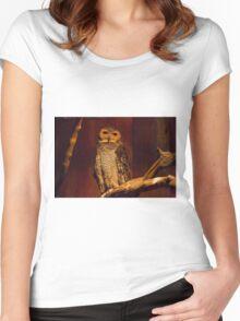 Owl Wisdom Women's Fitted Scoop T-Shirt