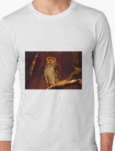 Owl Wisdom Long Sleeve T-Shirt