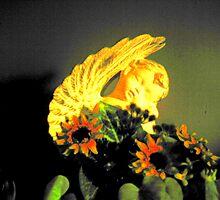 Angel by Robin Harrison