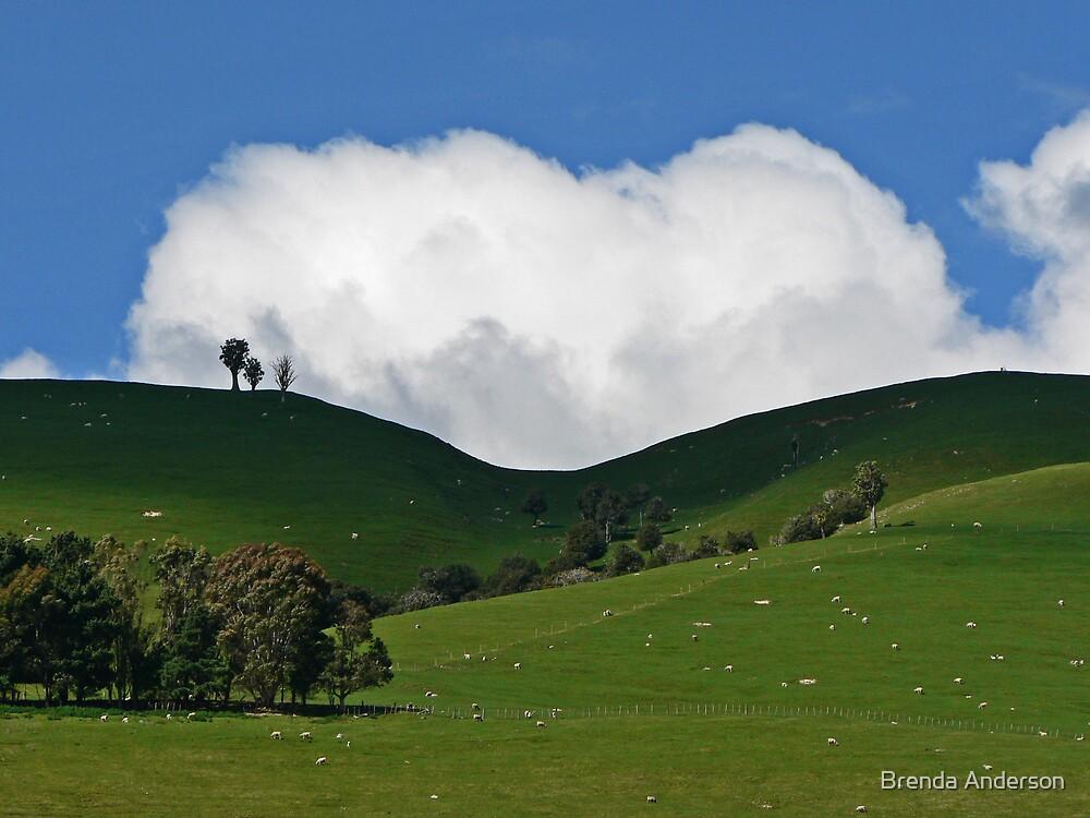 Cloud Dip by Brenda Anderson