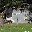 The Hinakura Hilton by niggle