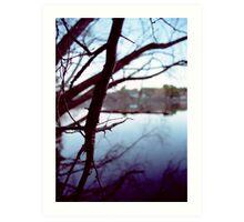 Lake Daylesford Art Print