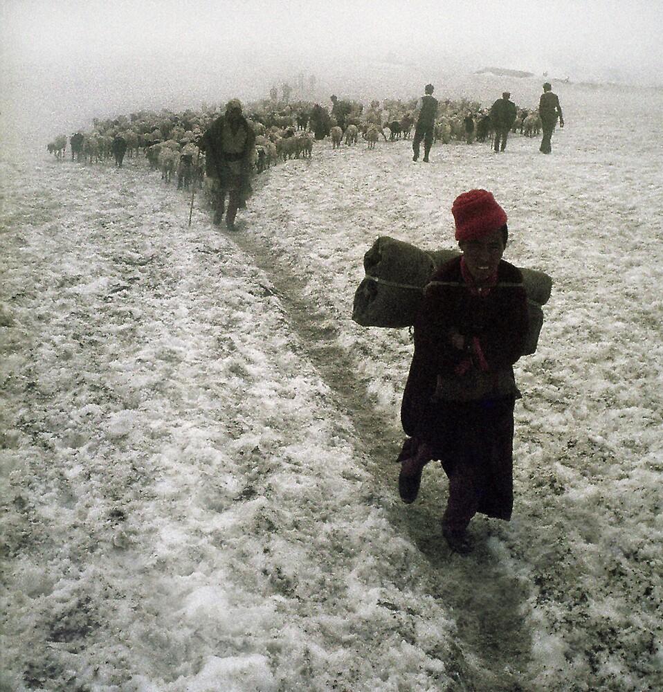 Snowboy by Bruce  Watson