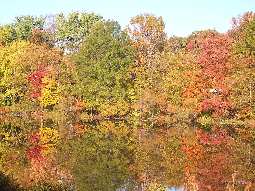 Reflections of Autumn by christyashe